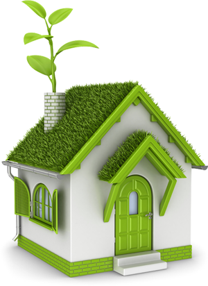 go green peninsula homes