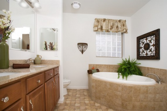 Lone Star Master Bathroom